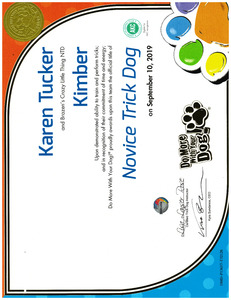 Kimber DMWYD Novice Trick Dog 2