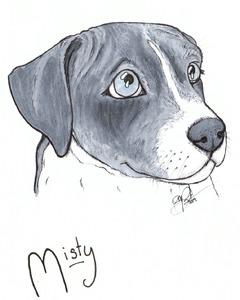 Mysti Drawing 8x10
