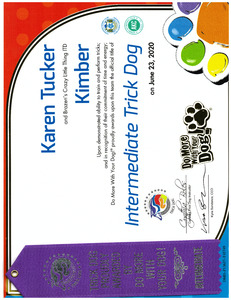 Kimber DMWYD Intermediate Trick Dog