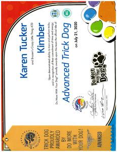 Kimber DMWYD Advanced Trick Dog