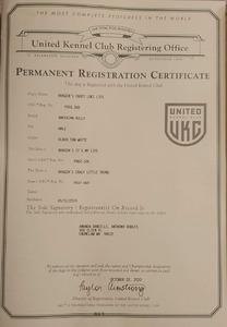 Loki Registration
