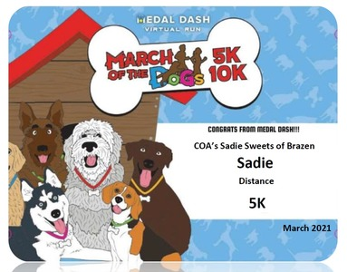 Sadie Metal Dash March of the Dogs 2021